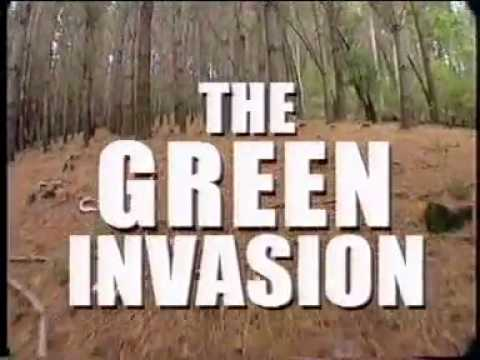 Green Invasion - Documentary on Forest Monocultures
