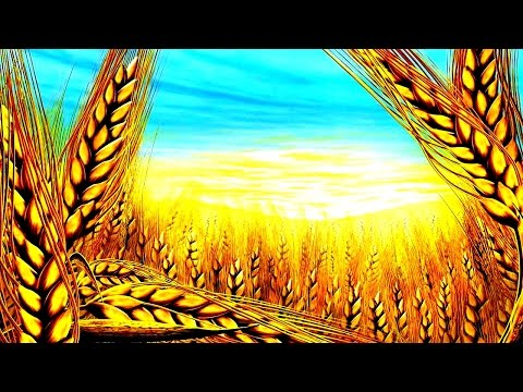 Кидать зерно во сне