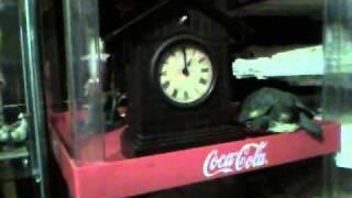 Junghans Cuckoo Clock On Ebay