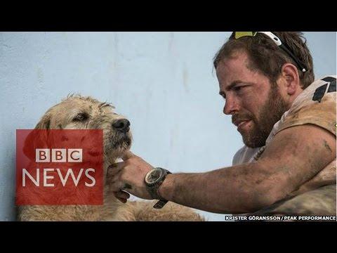 Extreme adventurers adopt plucky dog