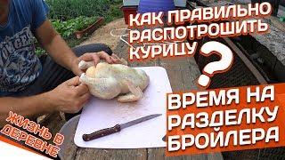 Как правильно распотрошить курицу? // Время на разделку бройлера? // Жизнь в деревне