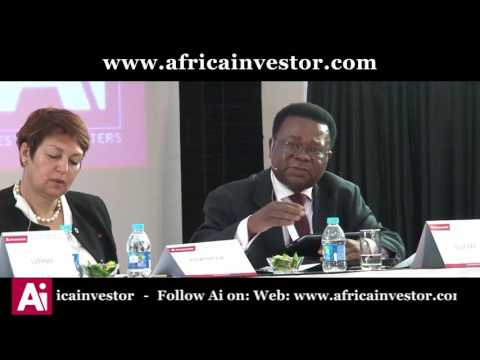 David Nuyoma speaks at the Ai Pension and Sovereign Wealth Fund Leaders' Summit 2017 Roundtable