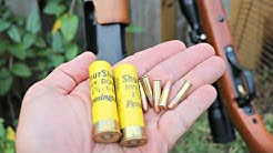 The TRUTH about .22 Long Rifle VS 20 gauge for Squirrel Hunting!