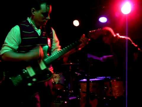 White Rabbits - Lionesse (live)