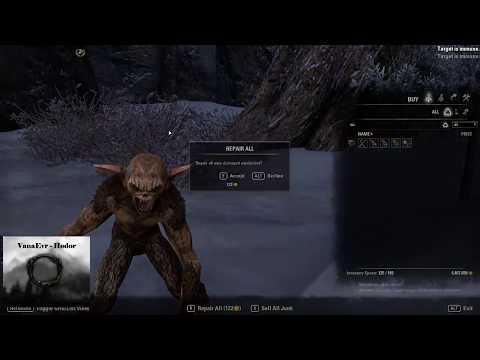 Dragonstar Arena (vet) 44'146 Score / Vitality 24/24 - Templar Healer - ESO