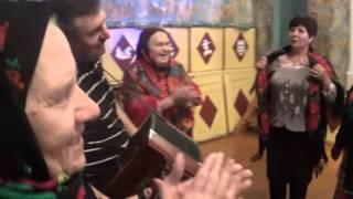 Замартынье встречаем старый новый год 2016 гармонь Иван Гладышев. Съемка видео Владимир Ланских.