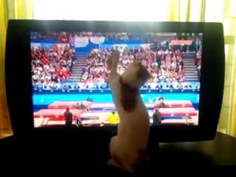 watching ESPN