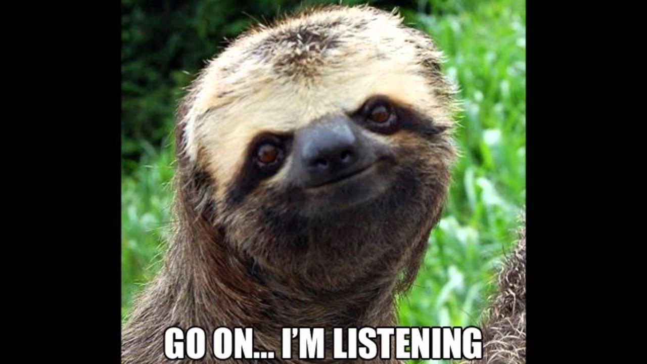 sloth meme generator