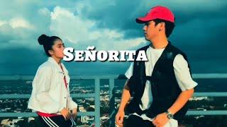 SEÑORITA - Shawn Mendes and Camila Cabello Dance | Ranz and Niana Plus Animation