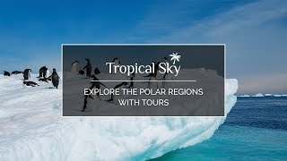 Explore the Polar regions with tours by Tropical Sky
