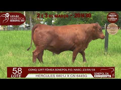 LOTE 58 CONQ 1297