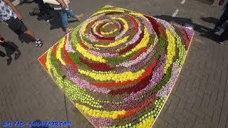 Фестиваль цветочных ковров, Вентспилс / Flower Festival / Ziedu paklāju festivāls, Ventspils