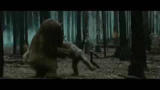Donde viven los monstruos (2009) - Trailer Oficial Español
