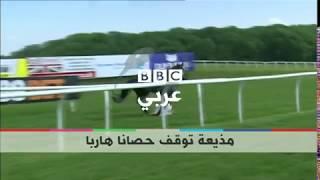 بي_بي_سي_ترندينغ | شاهدوا كيف تمسك مذيعة بريطانية بحصان هارب