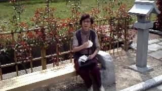 愛知県赤坂から知立 2010年4月