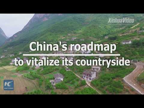 What is China's roadmap to vitalize its countryside?