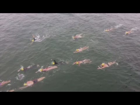 A group of athletes swam across the US-Mexico border for human rights awareness