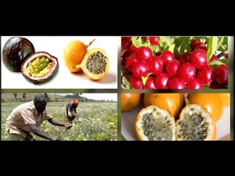 Nyandarua County Documentary