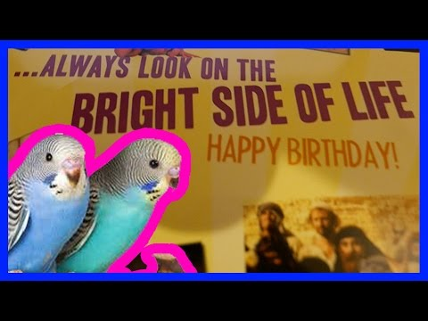 Demo - Faulty Monty Python Sound Greeting Card - Sung by Budgies and Eric Idle!