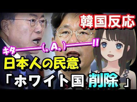 【韓国の反応】日本人の民意「韓国をホワイト国から削除」圧倒的多数でパブコメ終了