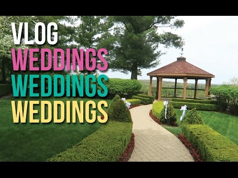 VLOG: Wedding Venues, Wedding Plans, and an Actual Wedding