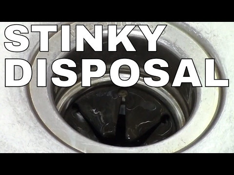 GARBAGE DISPOSAL- HOW TO CLEAN -- FAST Simple TRICK (ICE)