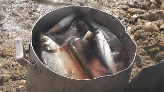 Рыбалка с берега Забыли садок под рыбу и Петрович офигел махать удочкой