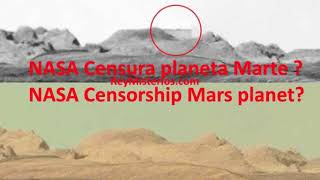 Marte podria tener animales Vivos