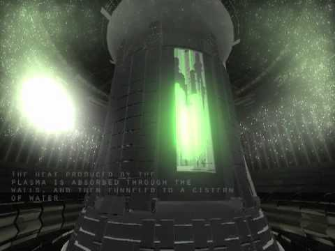 Inside a Fusion Reactor