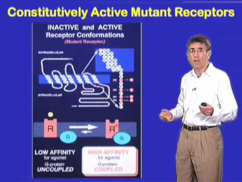 Robert Lefkowitz (Duke University) Part 1 Seven Transmembrane Receptors
