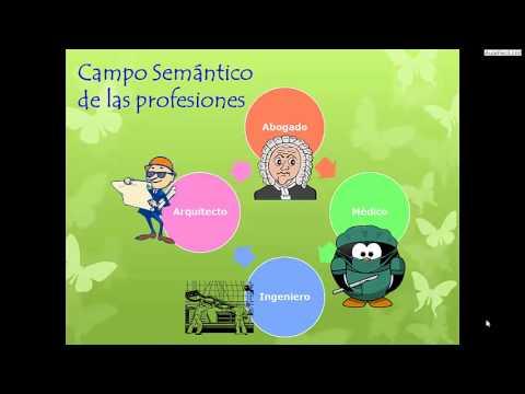 Campo Semantico Lengua Cuarto De Primaria 9 Anos