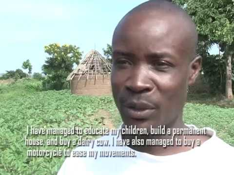 Voices of African Traditional Vegetables' Seed Merchants