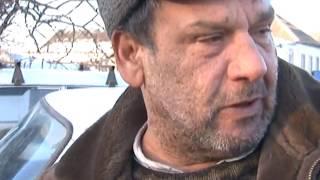 На Харьковщине собака загрызла ребенка