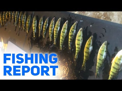 Ice Fishing Is Going On In Manistee, Mi - Fishing Report