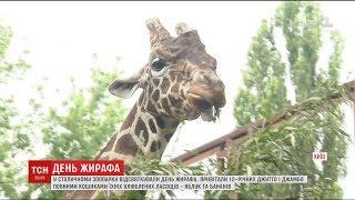 У столичному зоопарку відзначили всесвітній день жирафа