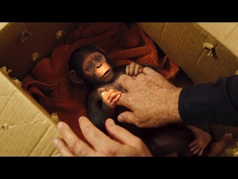 """""""Caesar's Story"""" DAWN OF THE PLANET OF THE APES Featurette"""