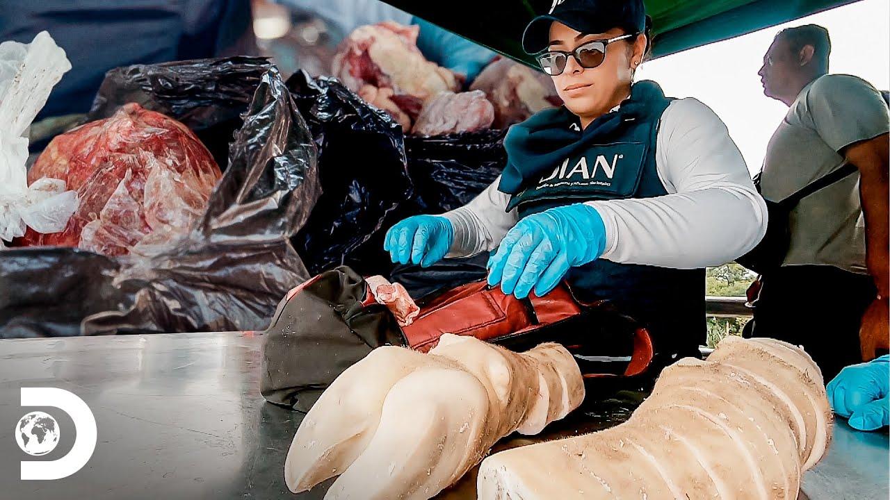 Confisco de cargas de alimentos irregulares | Operação Fronteira: América do Sul | Discovery Brasil