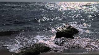 © 4К. Тест видеокамеры 4К Sony FDR-AX33. Черное море мое! //(Друзья! ПОДПИСЫВАЙТЕСЬ НА МОИ КАНАЛЫ и смотрите фильмы, сюжеты и ТВ передачи об подводном мире Чёрного и..., 2015-10-02T18:14:24.000Z)