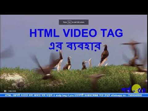 HTML TUTORIAL FOR BEGINNERS USE html5 video tag part 54 | website design tutorial thumbnail