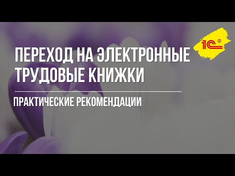 Электронные трудовые книжки - 2019