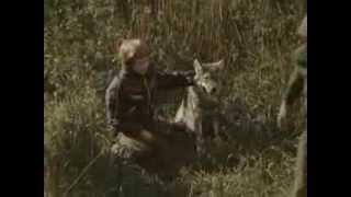 LAANETAGUSE SUVI (1979) - MAAILM, MIS ELAB SINUS TÄISPIKK VERSIOON!