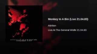 Monkey In A Bin (Live 21.04.83)
