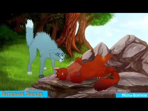Коты-Воители Синяя Звезда и Жёлудь - Где ты,там я