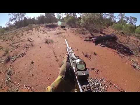 Trying Of Shoot Pigs With The Marlin 30-30 SS. Edit 10.5.12 Australia