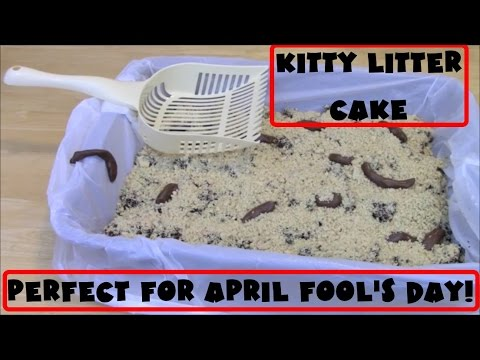 KITTY LITTER CAKE Gross April Fools Dessert Prank YouTube - Kitty litter birthday cake