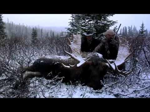 The Zone S2:E8  Muzzleloading BC Moose