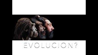 Evolución?