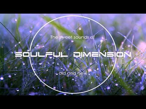 Soulful Dimension 29 - Soulful House Session