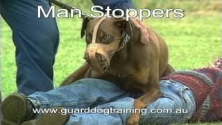 Guard Dog Training Centre Sydney