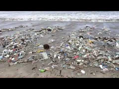 Kuta Beach Bali The Dirtiest Beach In Bali Indonesia Youtube